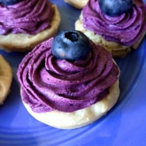 Flourless Lemon Cookies with Blueberry Whipped Cream | Pretty Pies